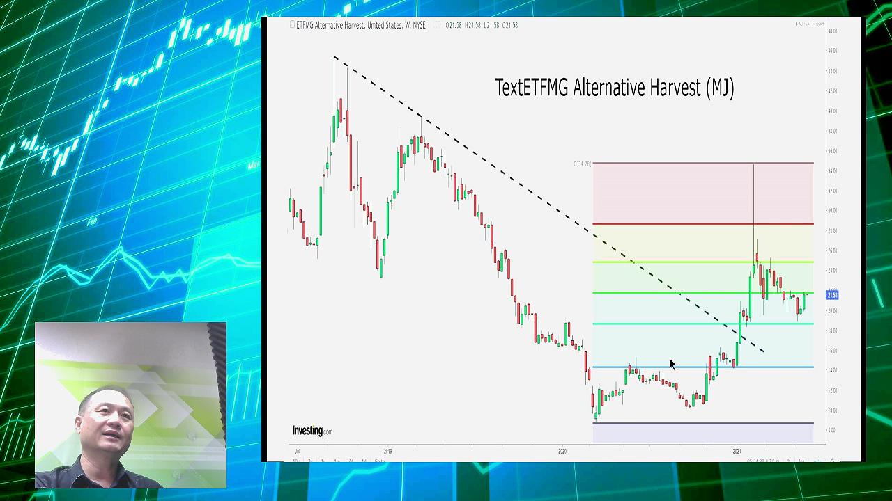【有片:淘寶圖】大麻股ETF(MJ)破三角阻力可留意